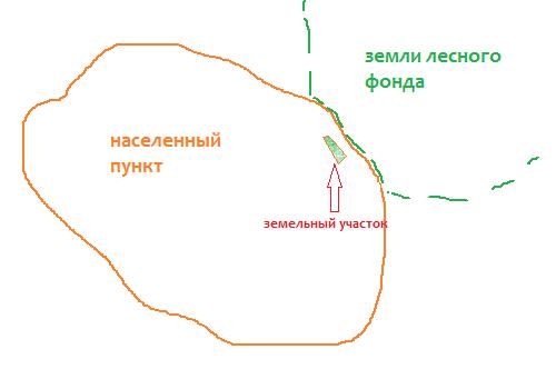 Богатство России: земли лесного фонда